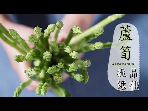 【夏】蘆筍的挑選方法