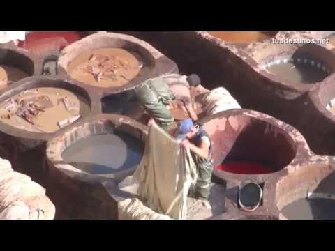 FEZ - Marruecos - La Medina - Maroc, Morocco, Fes, Fès, (فـاس , Fās - Turismo, tourism, travel