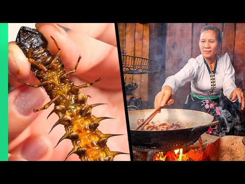 Yummy NIGHTMARE Fuel!! Eating with the White Thai for 24 Hours!! | TRIBAL VIETNAM EP5