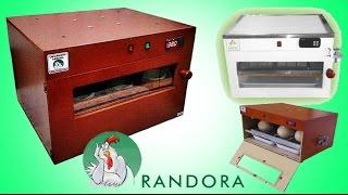 Unboxing chocadeira automática digital RANDORA