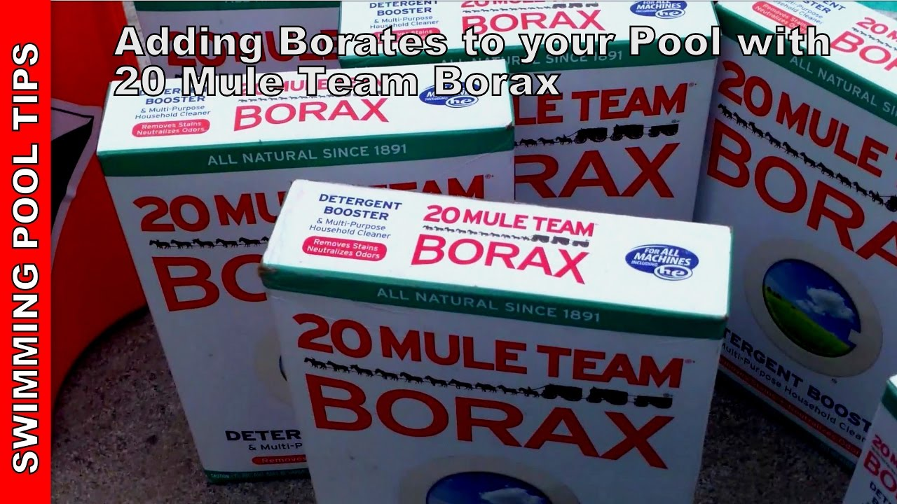 Adding Borates To Your Pool With 20 Mule Team Borax Level Of 30 50 Ppm Youtube