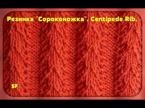 Knitting Stitches Download : [Full-Download] Knitting-stitch-patterns-rib-stitches-centipede-rib-
