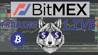 $BTC live Bitcoin trading on Bitmex. Road to 1BTC