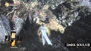 Dark Souls III New Herald Class Gameplay
