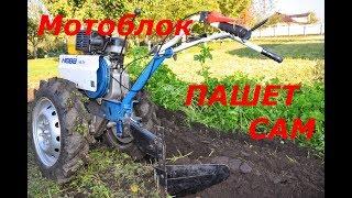 Мотоблок Нева сам пашет  сидераты  ( шины Ф-122 , а диски на 16 от автомобиля Нива )