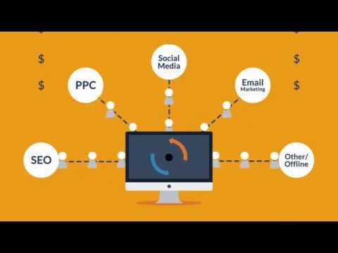 Website Design and Development Process