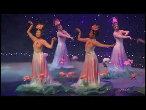 ♥ Ƹ̵̡Ӝ̵̨̄Ʒ ♥ The night of Lotus Flowers ~ : LUZ CALOR SOM