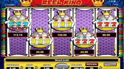 Astra Reel King JACKPOT 5 Scrolls Fruit Machine Video Slot (Demo)