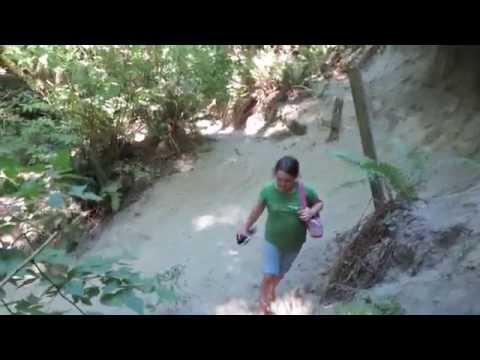 Hidden lake trail at Boeing Creek Park Shoreline Washington rough hike recommend waterproof boots MV