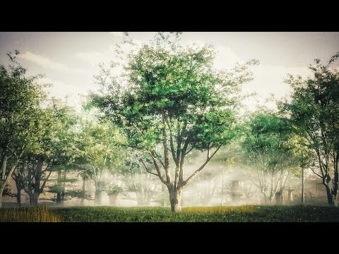 How to Create Realistic Trees : Blender Tutorial - YouTube