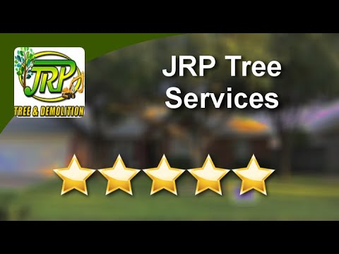 JRP Tree & Demolition Services Houston Great Five Star Review by Dina Wood