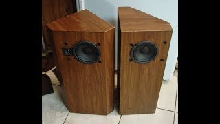 Bose 401 Direct/Reflecting Speakers  great sound