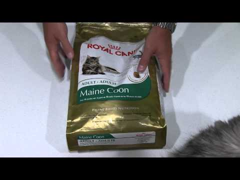 Royal Canin Maine Coon Cat Food Review