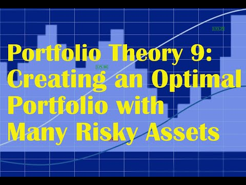 Portfolio Theory 9: Creating an Optimal Portfolio with Many Risky Assets in Excel