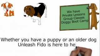 Dog Training Jacksonville (904) 803-4576