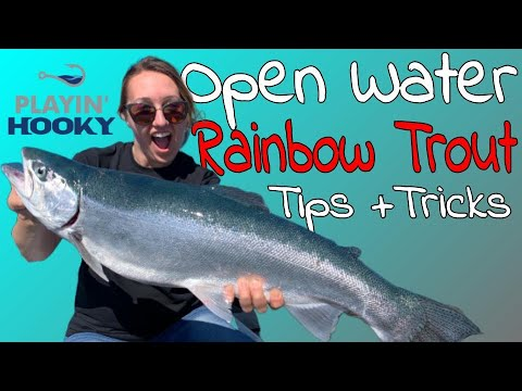 Surface Fishing Lake Michigan In Deep Water For Trout (Tips+Tricks)