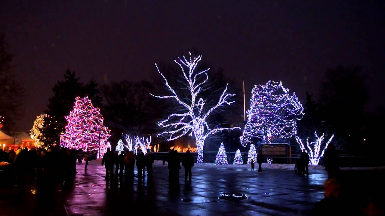 Zoo Lights Toledo