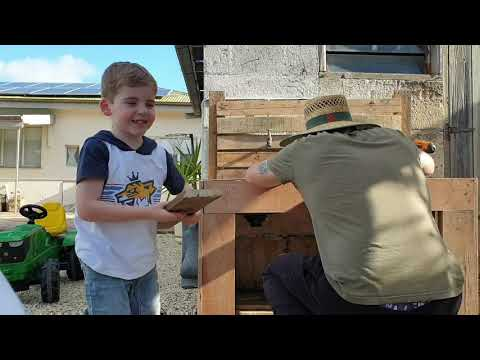 aston-helps-make-a-mud-kitchen-out-of-recycled-pallets!!!