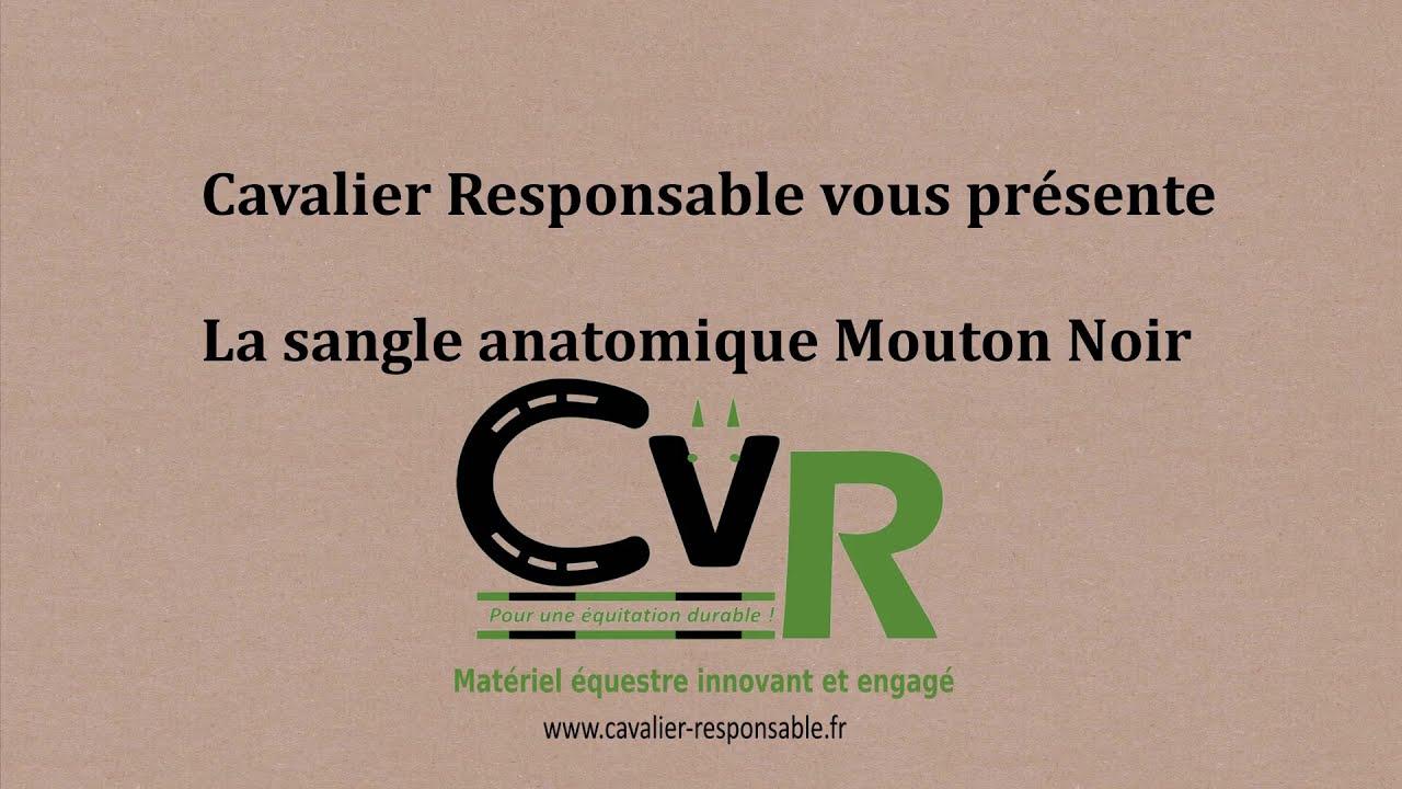 Sangles Anatomiques Cavalier Responsable, innovation, confort et sécurité