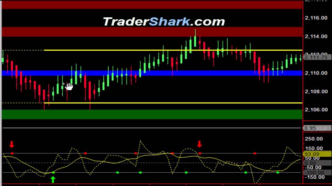 Trading Videos | TraderShark: Day-Trading S&P Emini, Euro