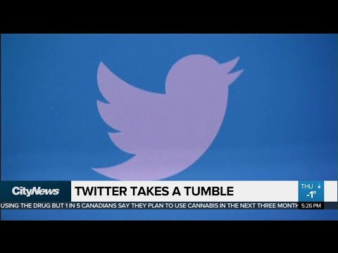 Business report: Twitter stock tumbles