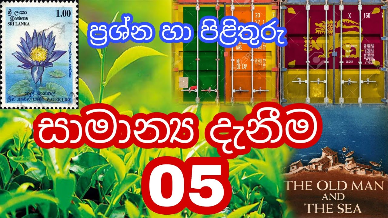 General Knowledge 05 Questions and Answers in Sinhala - IQ ...
