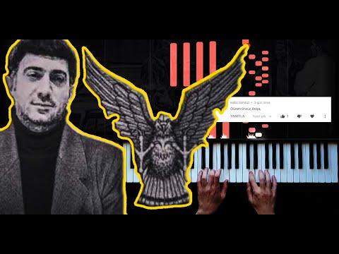 Konser  piyanisti DOLYA  VOROVSKAYA  çalarsa :)