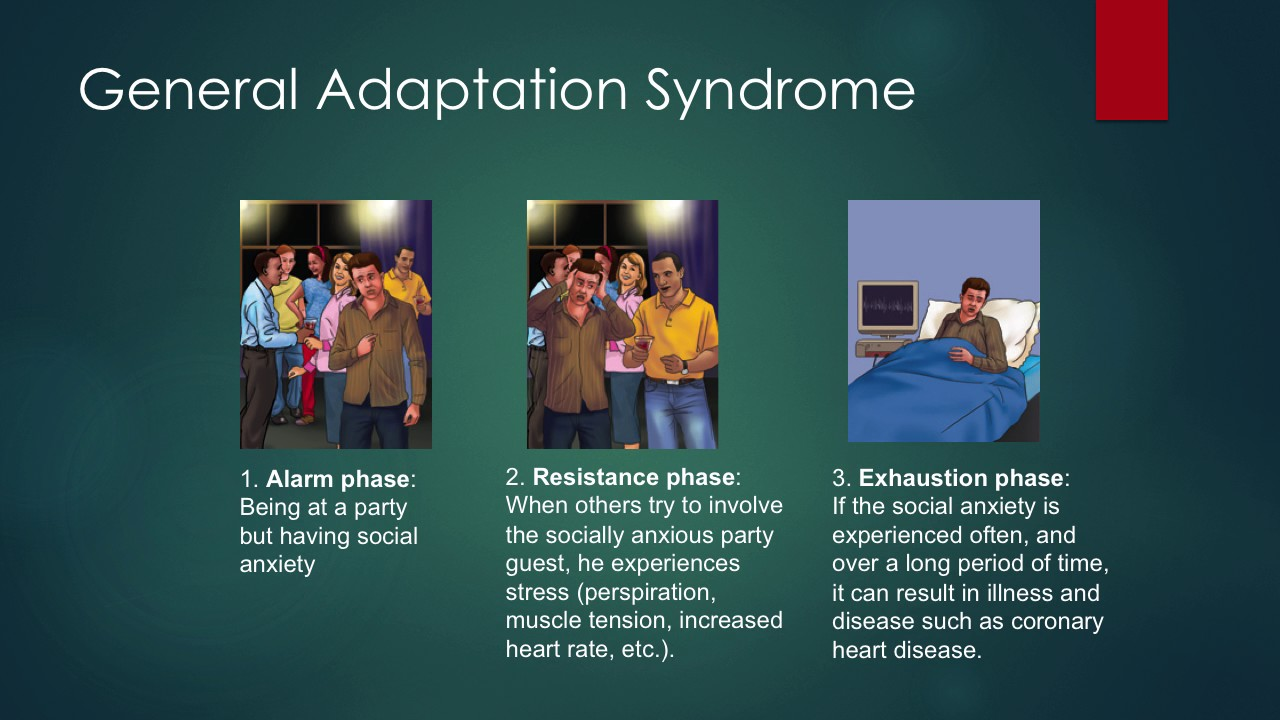 general adaptation syndrome General adaptation syndrome (gas) can be applied to any physiological  function under stress physiologists define stress as how the body reacts to a  stressor,.