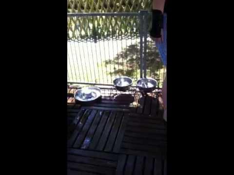Nettoyage du parc b b ext rieur youtube for Parc bebe exterieur