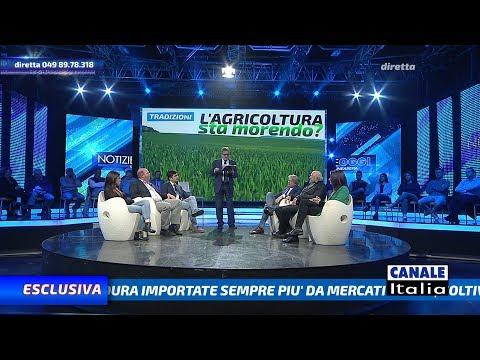 'L'agricoltura sta morendo ?' | Notizie Oggi Lineasera