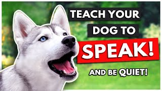 HOW TO TEACH YOUR DOG TO SPEAK (and be QUIET!)