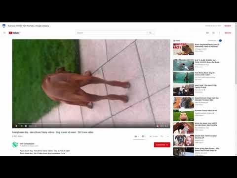 Lingo Blaster Review   Demo Video1 - el último software de video marketing