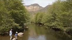 Sedona Fly Fishing AZ Highways