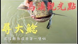 波爸釣魚趣-烏溪尋鯰記(台灣/路亞/溪釣/軍魚/捲仔/何氏棘魞/鯰魚) (201810)