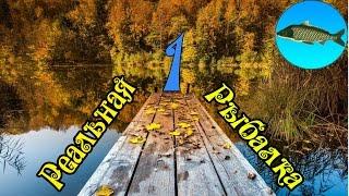 Реальная рыбалка игра на Android №1(Для тех кто хочет материально помочь. Рублевый: R126786960412 Гривневый: U416630670207 Долларовый: Z130881213763 Белорусский:..., 2015-09-27T08:15:52.000Z)
