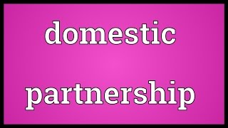 Domestic partnership Meaning