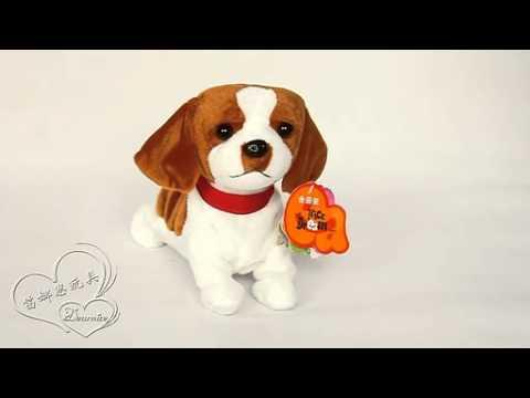 Flipping Walking Talking Dog Puppy Review