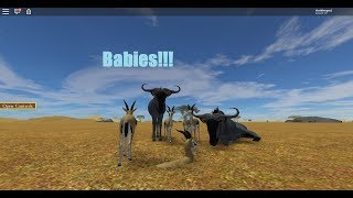 roblox wild savannah protect the babies