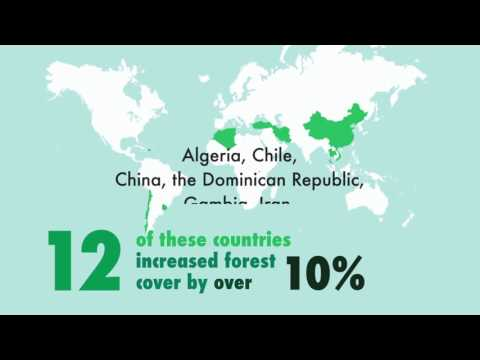 State of the World's Forests 2016 (SOFO2016)
