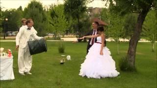 Научное шоу на свадьбе Саратов Энгельс Новый век