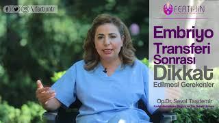 Embriyo Transferi Sonrası Dikkat Edilmesi Gerekenler