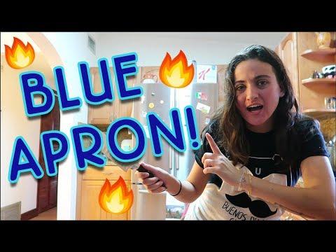 Cooking BLUE APRON & Taking Leia to the Vet! | VLOGMAS | 12.10.18