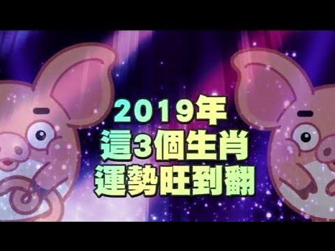 【金豬年運勢解密】2019年這三大幸運星 好運竟旺到翻 | 台灣蘋果日報