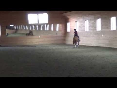 Hannah Irons and Little pea riding second/third level dressage. may 2014