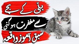 Billi Ke Bache Se Maghfirat Ho Gai  Maghfirat Ka Waqia  Urdu Moral Story  Fairy Tails