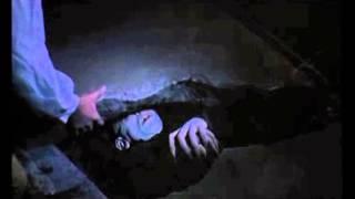 Trailer NOSFERATU THE VAMPYRE (Werner Herzog, 1978) - Festival de Cine 4+1