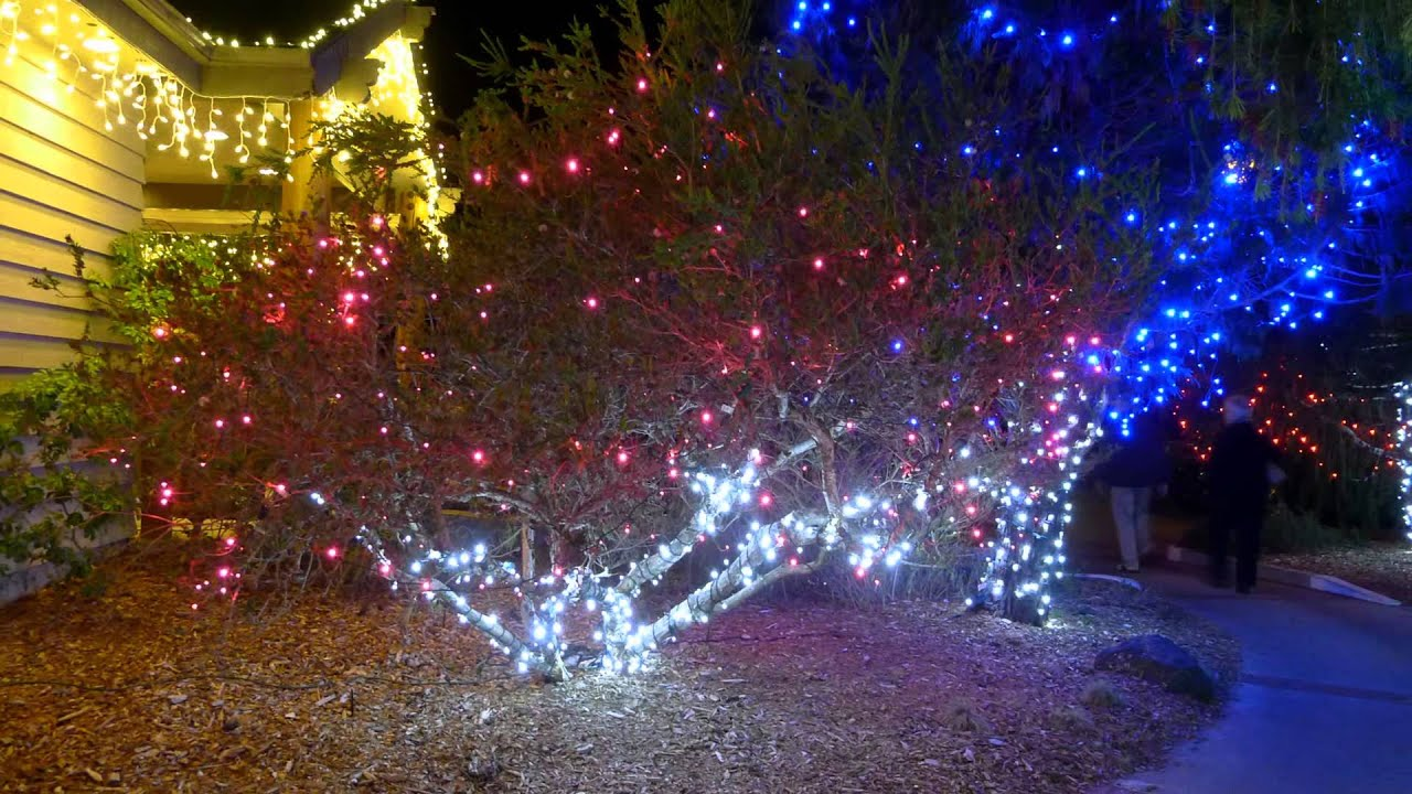 CHRISTMAS LIGHTS - CAMBRIA PINES LODGE - CALIFORNIA - ERNESTO ...