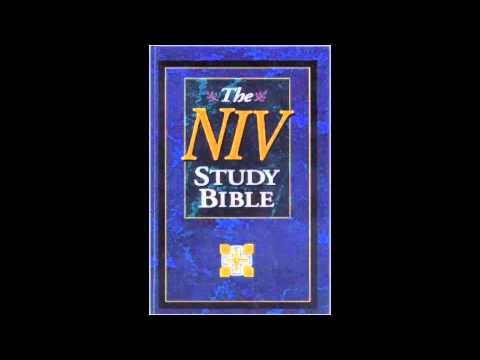 The Book of Habakkuk (NIV Audio Bible Non Dramatized)