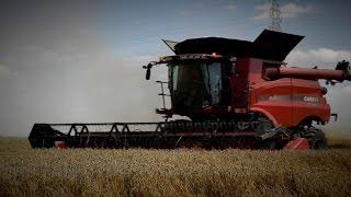 Wielki Test Kombajnów ! Claas Lexion 770 TT | Case Axial-Flow 8240 |__| The Farm Brothers