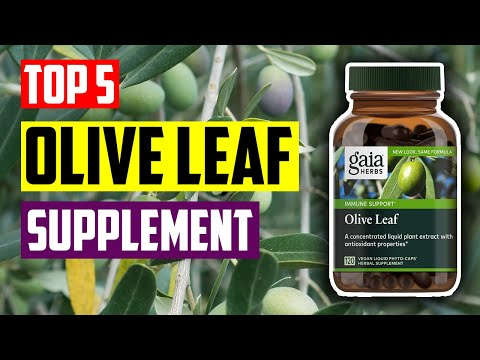 Best Olive Leaf Supplement: Top 5 Best Olive Leaf Herbal Supplement For Boosting Immune